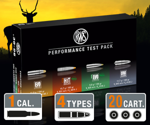 RWS Performance Test Package